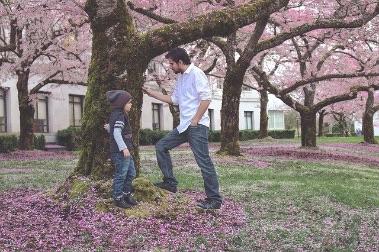 درخت، بچہ اور باپ